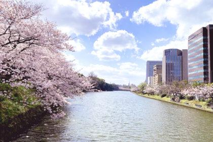 アイキャッチ-福岡城さくらまつり2019でお花見満喫