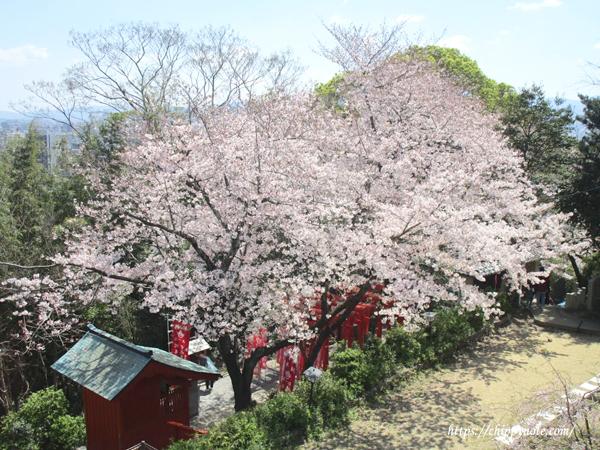 境内から稲荷神社を眺める