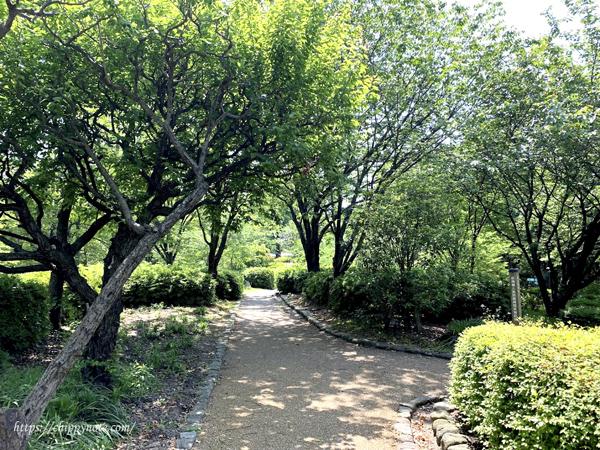 植物園・外