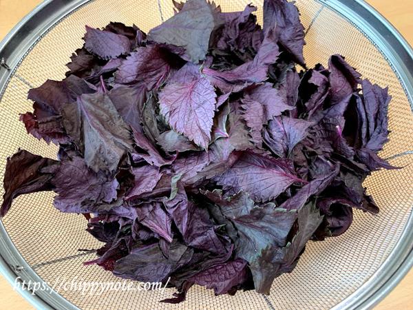 赤紫蘇 茎と切り離す