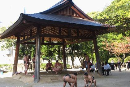 〈住吉神社〉参拝・浅香山部屋の朝稽古を見学しました!-アイキャッチ