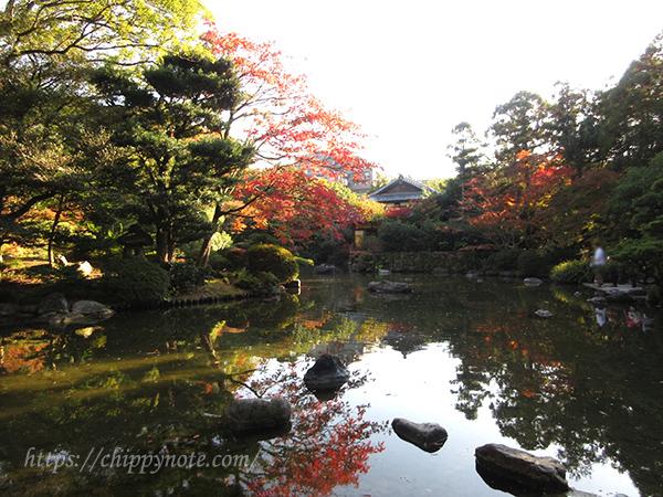 〈友泉亭〉で紅葉を見てきました!-アイキャッチ