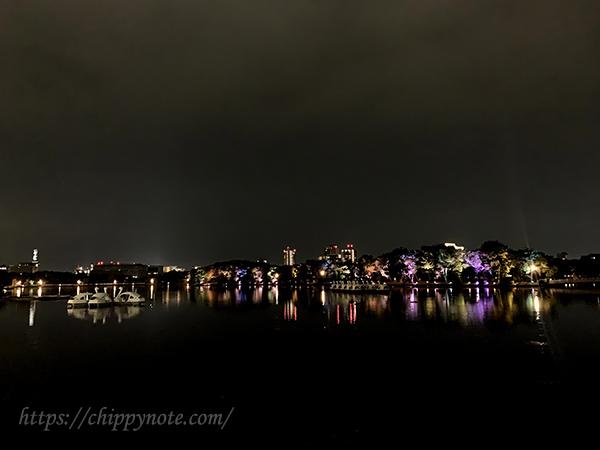 夜のスワンボート・遠景