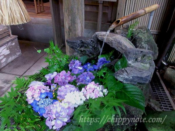 花と手水舎・3